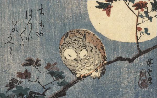 hiroshige_owl